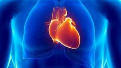 Lower Heart Rate Improves CCTA Image Quality, Dose Exposure