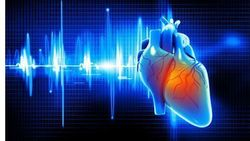 Lasting Heart Damage Unlikely for Patients with Mild COVID-19