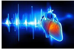 CAD-RADS Outperforms CAC Scoring in Predicting Major Cardiovascular Events