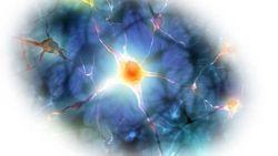 Alzheimer's Energy Metabolism Biomarker Revealed with 7T MRI