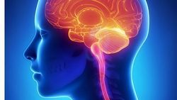 New MRI Guidelines for Multiple Sclerosis Show Global Agreement