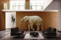 Trust can be the Elephant in the Room (or Practice)