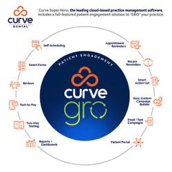 5Ws* Curve GRO