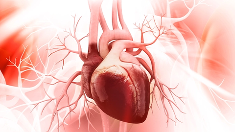 New Drug Review: Tafamidis Meglumine  for Cardiomyopathy