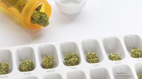 Prescription Counseling Equally Applicable to THC Products