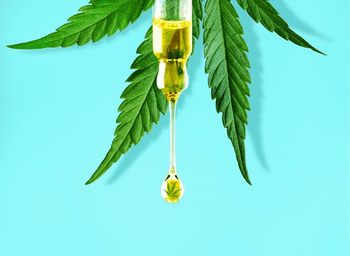 Develop a Plan for CBD Therapy