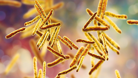 New Drug Review: Pretomanid for Highly Drug Resistant Tuberculosis
