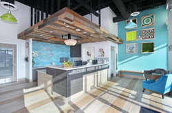 Six steps to success in building a new veterinary hospital