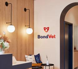 Bond Vet receives a $170 million investment from Warburg Pincus
