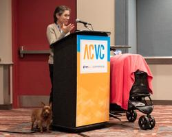 How to support companion animals with special needs