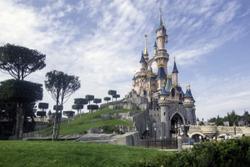 How would Walt Disney runaveterinary practice?