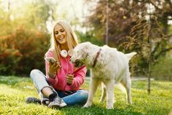 News wrap-up: This week's veterinary headlines, plus pain management careers