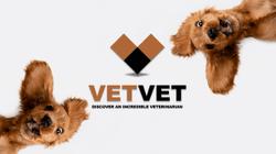 New online platform helps pet owners discover veterinarians