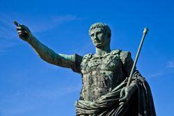 No place for Caesars in veterinary medicine