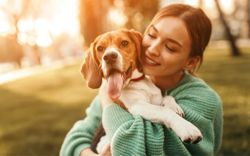 Why yearly heartworm testing is a must