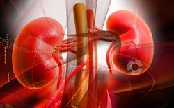Dapagliflozin Effective for Reducing CV Risk in Diabetes, Irrespective of Kidney Function