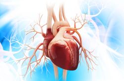 Heart Damage Common Following Hospitalization for Severe COVID-19