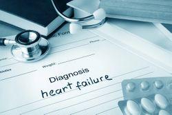 Sex Hormone Levels and Risk of Heart Failure in Older Men, Postmenopausal Women