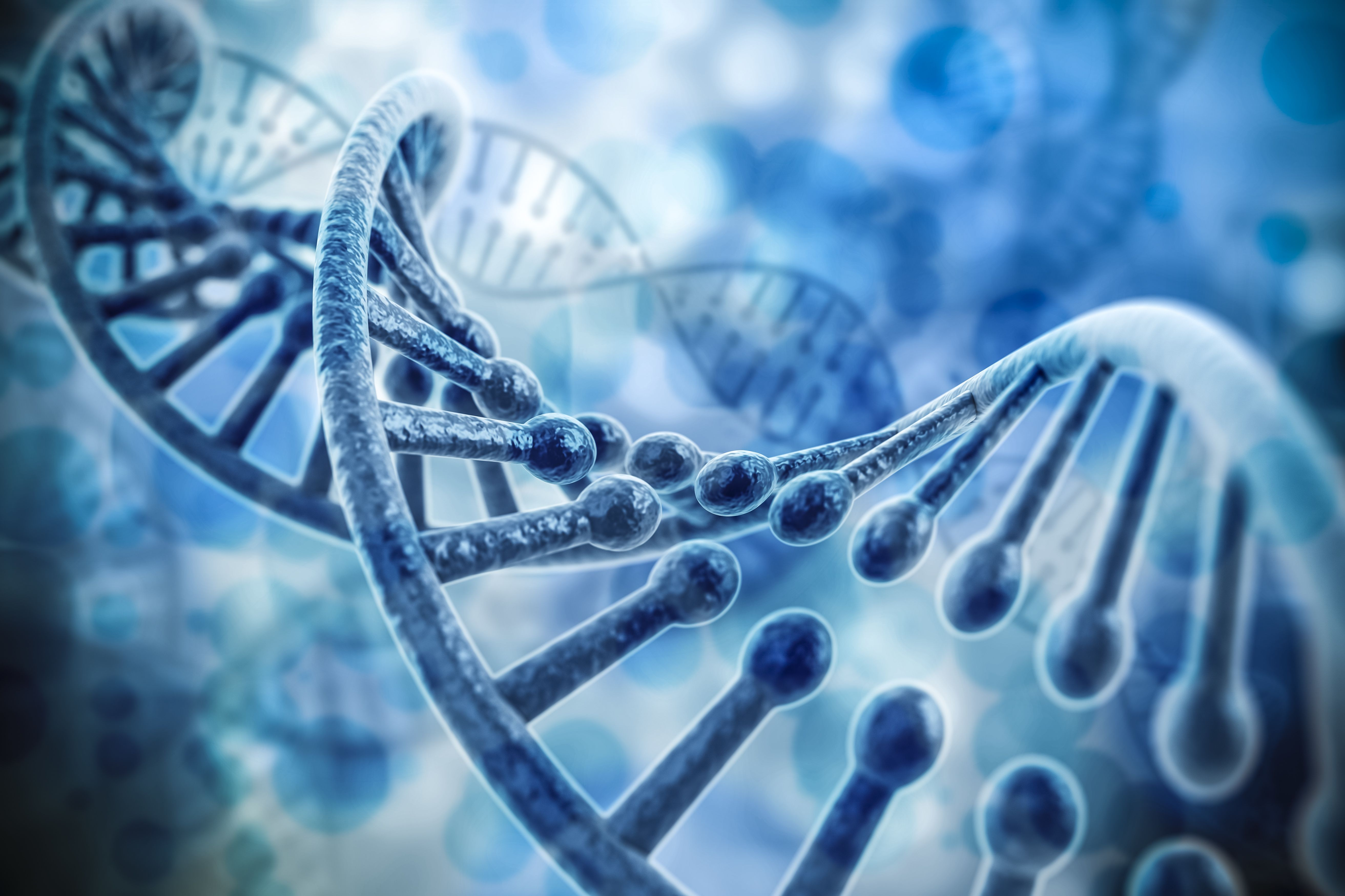 Research Identifies Genetic Variations That Can Predispose Pregnant Women to a Rare Heart Condition