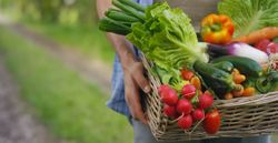 "Harvard Study Calculates ""Ideal"" Fruit and Vegetable Intake for Heart Health"
