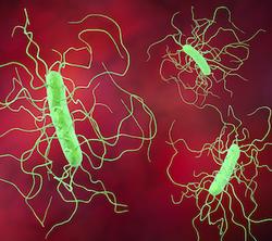 Vancomycin, Fidaxomicin Show Promise Treating Stem Cell Patients with C Difficile