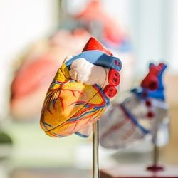 New Clinical Guideline Focuses Solely on Chest Pain Evaluation, Diagnosis