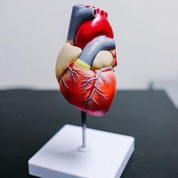MicroRNA Detection Exhibits Value in Acute Heart Failure Diagnosis