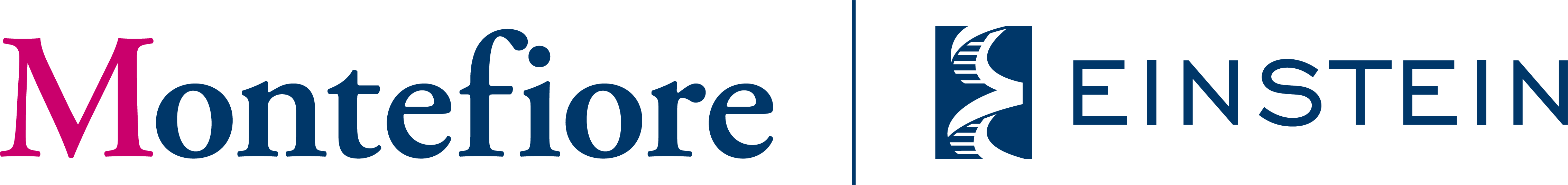 Strategic Alliance Partnership   <b>Montefiore</b>