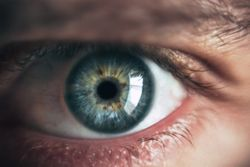 Diabetes Could Influence Glaucoma Patient Microvascular Density