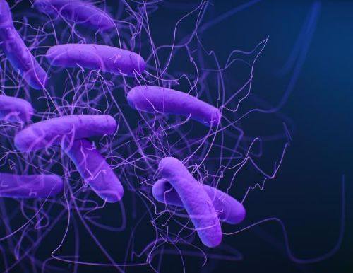 C. diff Contamination Not Affected by Ultraviolet Disinfection Devices
