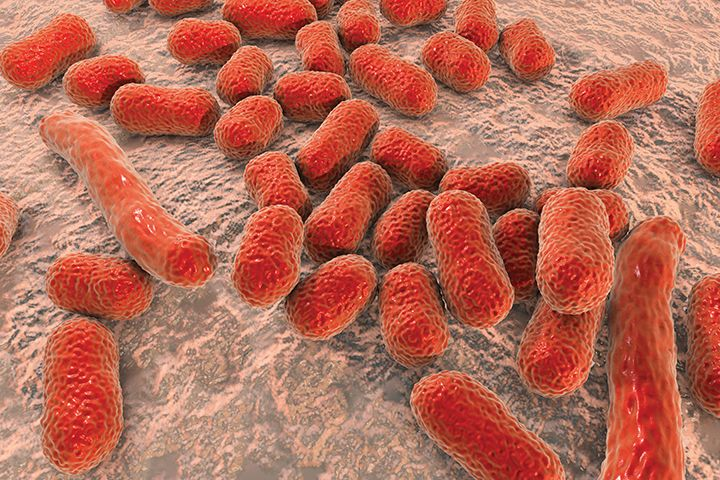 How Infection Preventionists and  Hospital Administrators Can Tackle 2  New Superbugs on the CDC's Urgent List
