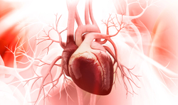 How to manage cardiometabolic syndrome