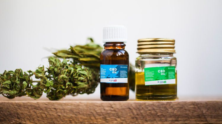 The CBD oil trend