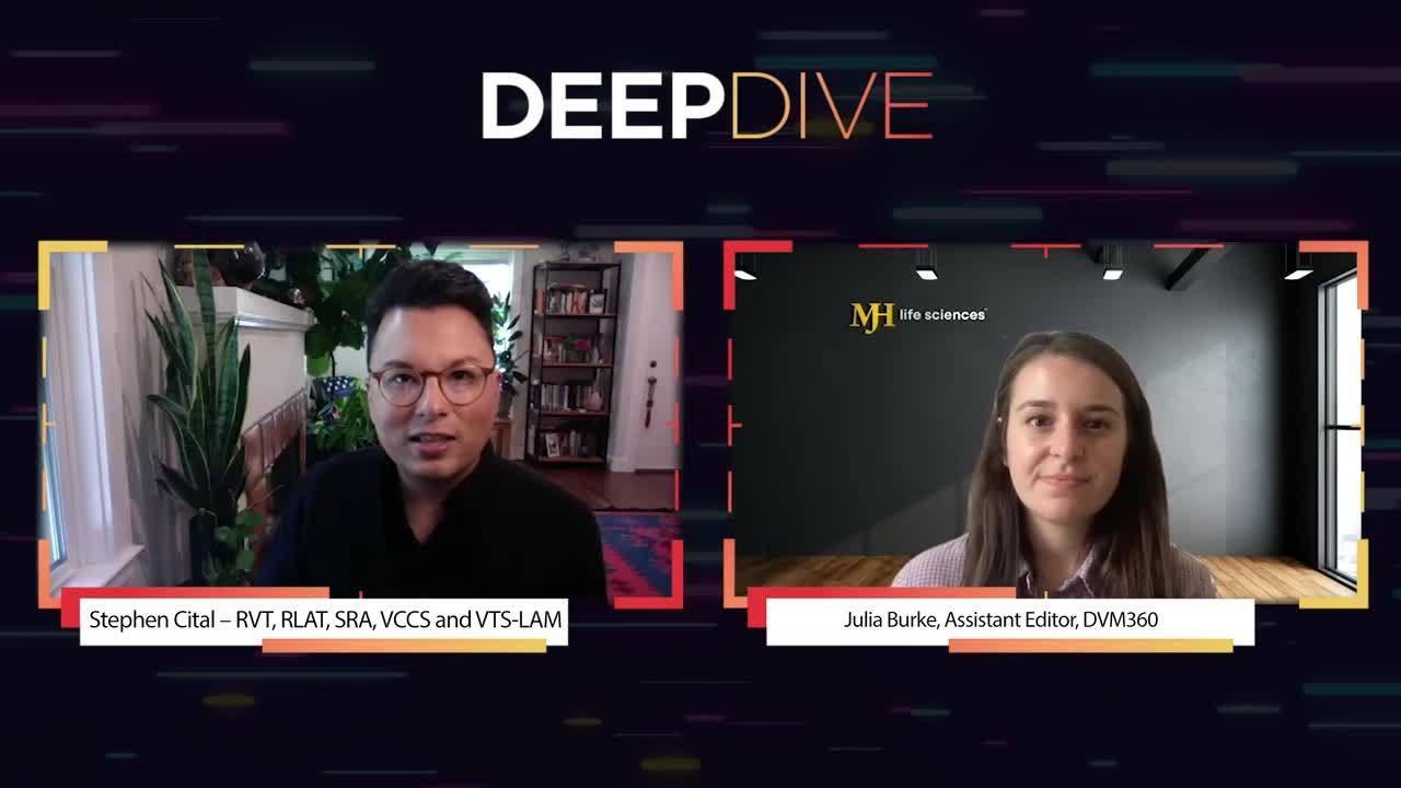Deep Dive: Deep Dive Into Veterinary CBD Research