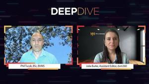 Deep Dive: Deep Dive Into Australian Wildfire Impact on Wildlife