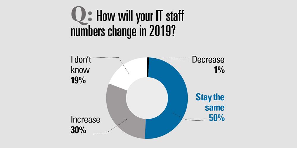 IT staff numbers increase