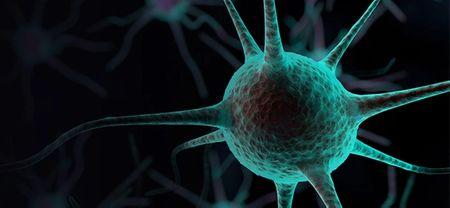 Disease Spotlight: Multiple Sclerosis