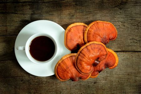 Are medicinal mushrooms on the cusp of mainstream fame?