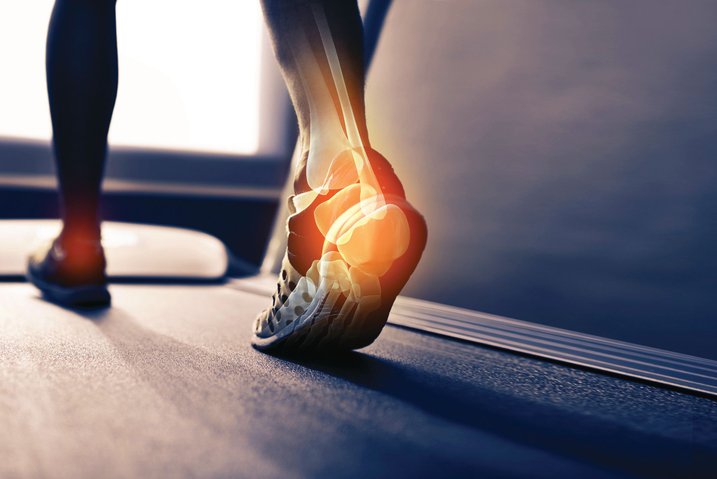 Bone Health Ingredients Stand Tall in New Research