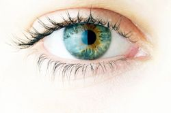 Capsanthin ingredient may help regulate intraocular pressure, says recent animal study