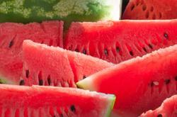 Charleston gray watermelon