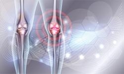 Bioiberica's Mobilee hyaluronic acid shows bioavailability, efficacy for joint health in new study to be shared at Vitafoods 2021