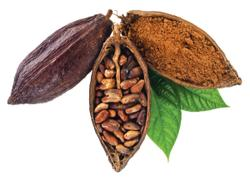 First-ever cacao fruit juice nutraceutical, for circulatory health, unveiled by Barry Callebaut