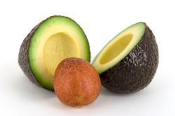 Avocado yield