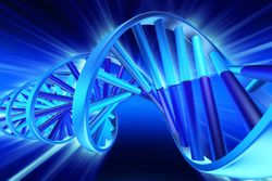 Why We're Adding DNA Testing, Ingredient Supplier Explains