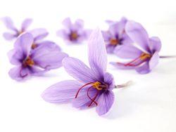 Affron saffron ingredient receives US patent for mood support
