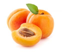 How apricots got to the U.S.