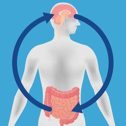 Probiotics: Smart strategies for brain health