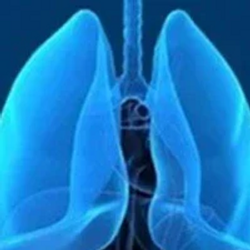 D-0316 Shows Encouraging Efficacy in EGFR T790M+ NSCLC Subsets