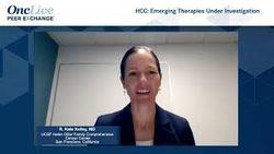HCC: Emerging Therapies Under Investigation